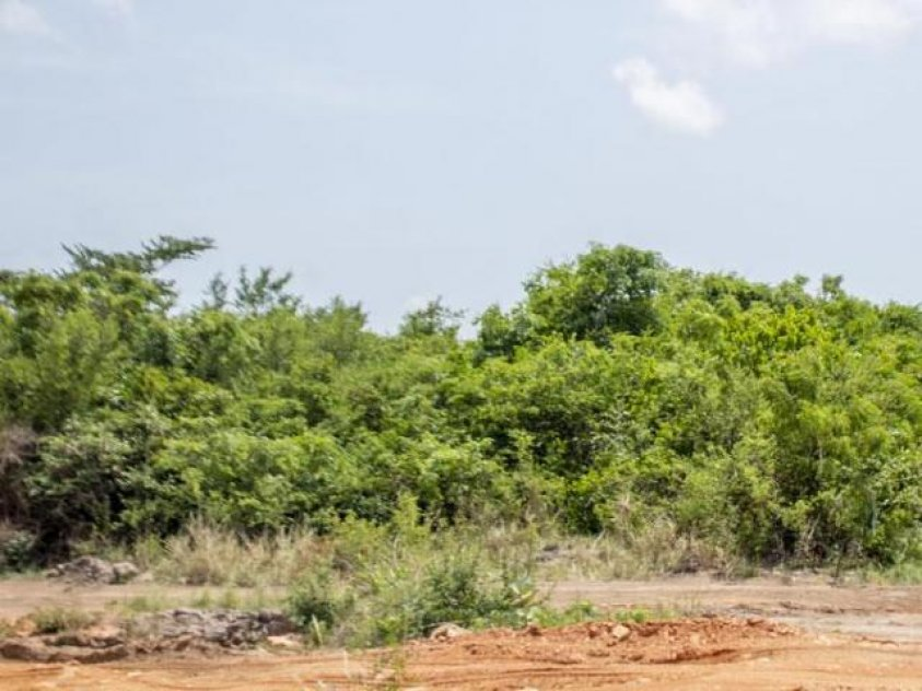 1 plot of land for sale in Nekede Owerri, Near federal poly.